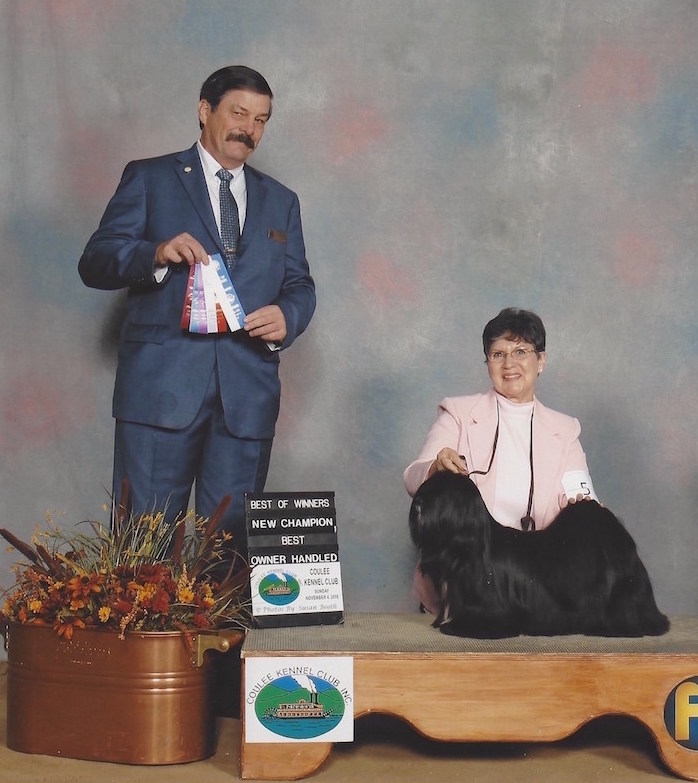 Black Lhasa with handler and judge